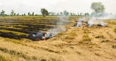 Less incidents of stubble burning in 2021 as compared to last year